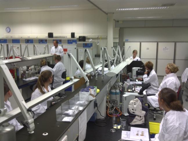 Cursus parasitologie paard laboratorium