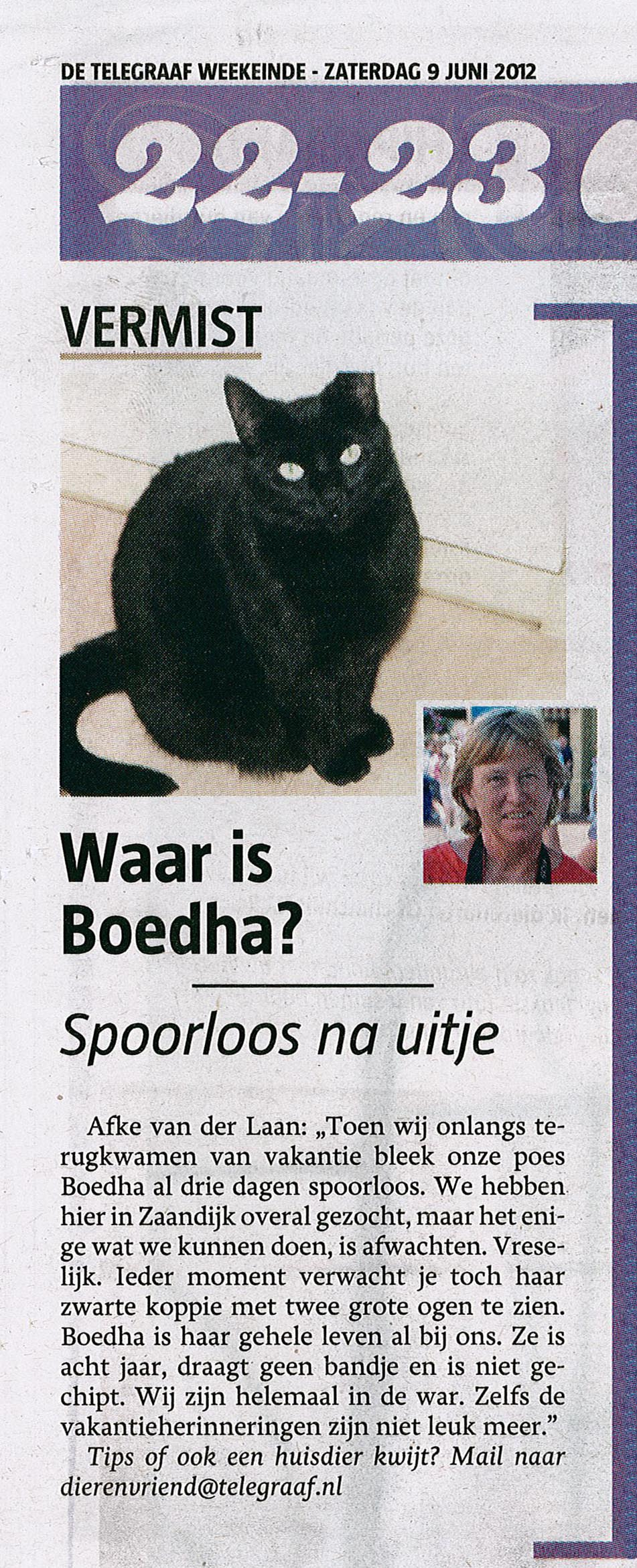 Vermiste kat Boedha
