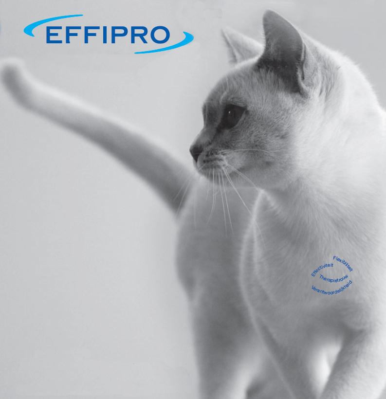 Effipro