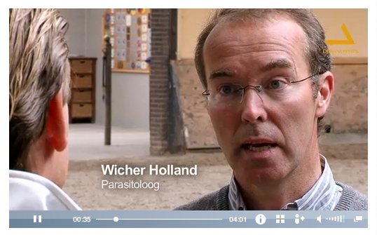 3D Ontworming Paard, opnames 3D video's Wicher holland