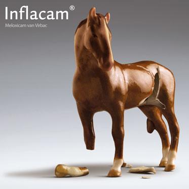 Inflacam