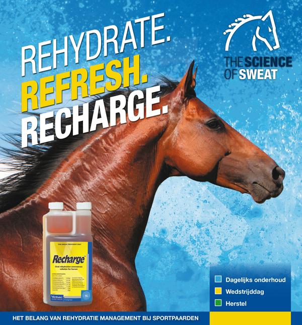 Recharge elektrolyten en glucose