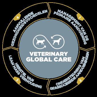 Veterinary Global Care