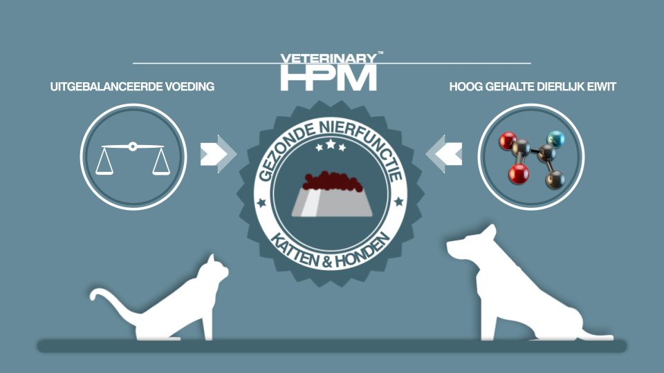 HPM veterinary - gezonde urinewegen